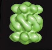 Кругооборот белков