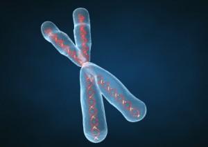 Регуляция действия генов