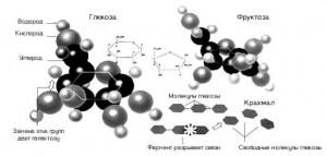 Цель курса биохимии